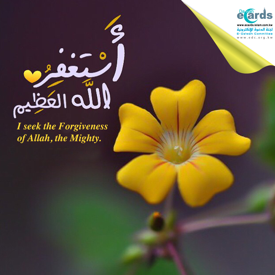 flower - Forgiveness of Allah