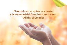Musulmán es quien se somete a la voluntad de Dios