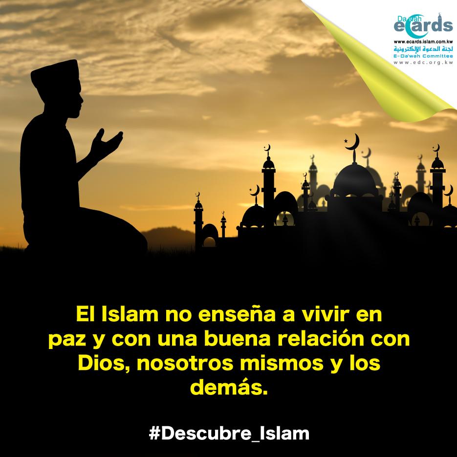 El Islam nos enseña a vivir en paz y armonía