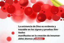 La existencia de Dios es evidente el los innumerables signos