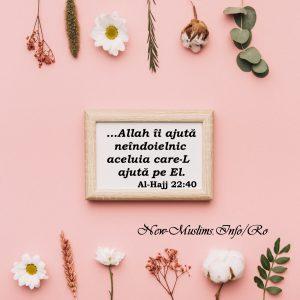 Ajutorul lui Allah