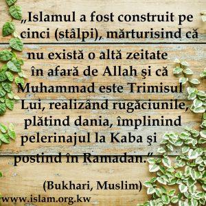 Stalpii Islamului