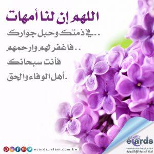 اللهم ارحهم أمهاتنا