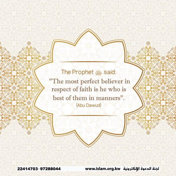 The Perfect Believer