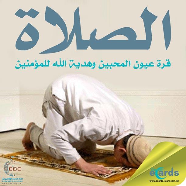 501- الصلاة قرة عيون المحبين